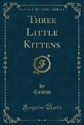 Three Little Kittens (Classic Reprint)