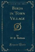 Birds in Town Village (Classic Reprint)