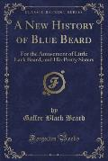 A New History of Blue Beard: For the Amusement of Little Lack Beard, and His Pretty Sisters (Classic Reprint)