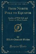 From North Pole to Equator: Studies of Wild Life and Scenes in Many Lands (Classic Reprint)