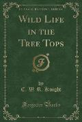 Wild Life in the Tree Tops (Classic Reprint)