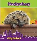 Hedgehog: City Safari