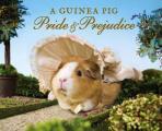 Guinea Pig Pride & Prejudice