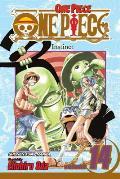 One Piece 14 Instinct