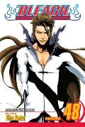 Bleach Volume 48