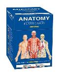 Anatomy Flash Cards Quick Study
