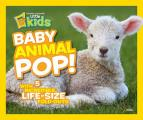 Baby Animal Pop!: With 5 Incredible, Life-Size Foldouts
