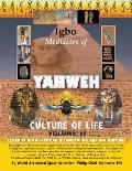 Igbo Mediators of Yahweh Culture of Life: Volume II: Learn to Read Egyptian Hieroglyphics and UFO Writings