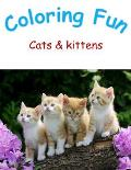 Colouring Fun: Cats and Kittens