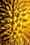 Durian Fruit 100 Page Lined Journal: Blank 100 Page Lined Journal for Your Thoughts, Ideas, and Inspiration