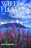 Wild Flowers of the Yukon Alaska & Northwestern Canada