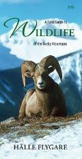 Field Guide to Wildlife of the Rocky Mountains