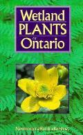 Wetland Plants Of Ontario