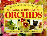 Growing & Displaying Orchids A Step By