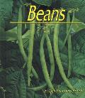 Beans (Plants: Life Cycles)