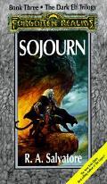 Sojourn Forgotten Realms Dark Elf 03