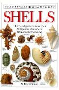 Shells The Visual Guide To More Than 500 Speci