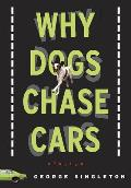 Why Dogs Chase Cars Tales of a Beleaguered Boyhood