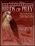 The Illustrated Birds of Prey:...