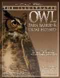 Illustrated Owl: Barn, Barred & Great Horned: The Ultimate Reference Guide for Bird Lovers, Artists, & Woodcarvers