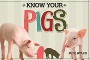Know Your Pigs
