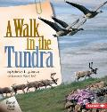 Walk In The Tundra