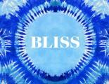 Bliss An Exploration of the Current Hippie Counterculture & Transformational Festivals