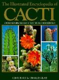 Illustrated Encyclopedia Of Cacti