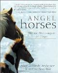 Angel Horses Divine Messengers Of Hope
