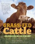 Grass Fed Cattle How to Produce & Market Natural Beef