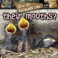 How Do Animals Use… Their Mouths?