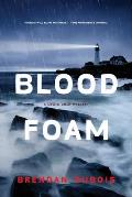 Blood Foam A Lewis Cole Mystery