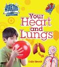 Your Heart & Lungs