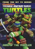 Rise of the Turtles