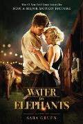 Water for Elephants MTI