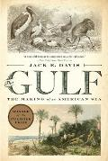 Gulf The Making of An American Sea by Jack E Davis