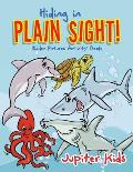 Hiding in Plain Sight! Hidden Pictures Activity Book