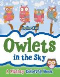 Owlets in the Sky: A Flighty Coloring Book