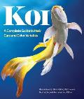 Koi: A Complete Guide to Their...