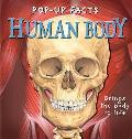 Human Body Pop Up Facts