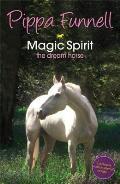 Magic Spirit 1