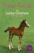 Lucky Chance the New Foal