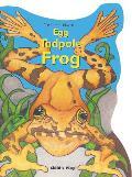 Egg Tadpole Frog
