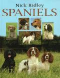 Spaniels: Work, Rest and Play