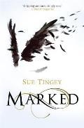 Marked: The Soulseer Chronicles Book 1