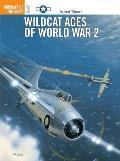 Wildcat Aces of World War 2