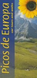 Picos de Europa: Car Tours and Walks