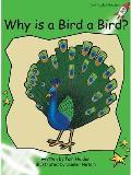 Why Is a Bird a Bird?