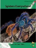 Spiders Everywhere!