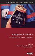 Indigenous Politics: Institutions, Representation, Mobilisation
